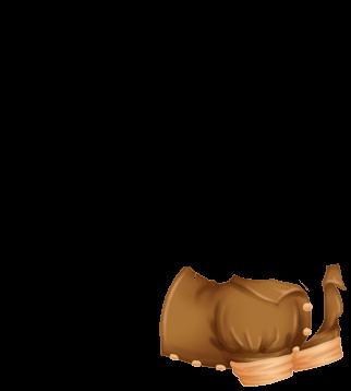 Adoptuj Fretka Beżowy