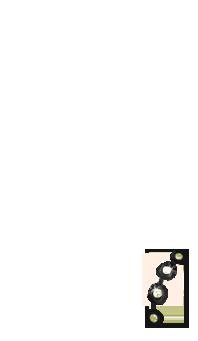 Adoptuj Fretka Kakadu