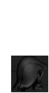 Adoptuj Fretka Beżowy Brązowy