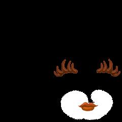 Adoptuj Chomik Pisklę