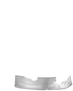 Chomik Noir et Blanc