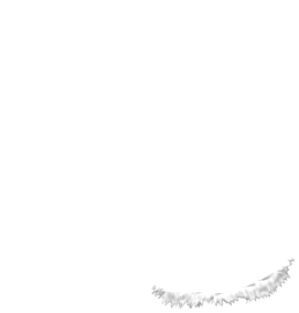 Królik Simba