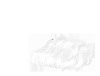 Adoptuj Mysz Krem albinos