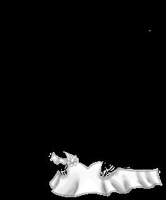 Mysz Yeti