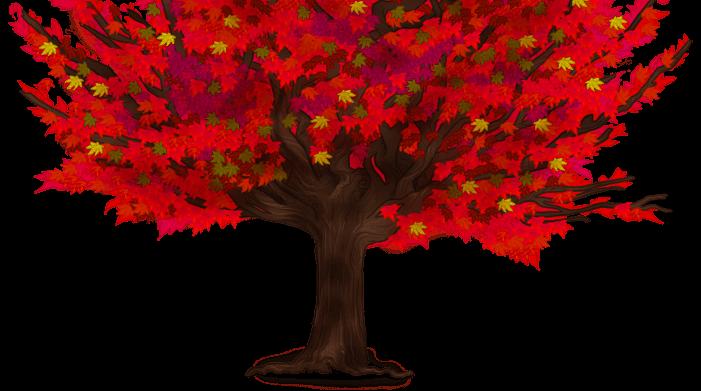 Spadek drzewa