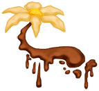 Pływający Kwiat