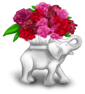 Vase Bollywood