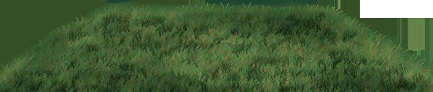 Bridal Car Grass