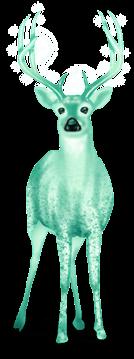 Renifer śnieżny