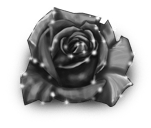 Różowa wróżka zimy