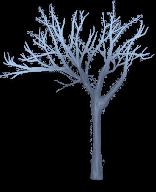 Drzewo renifera