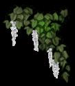 Kwiat Elfa