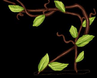 Roślina wspinaczkowa