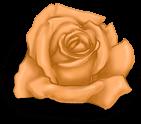 Mały różowy Walentynki