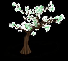 Kwieciste drzewo