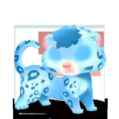 Adoptuj Fretka Lampart niebieski