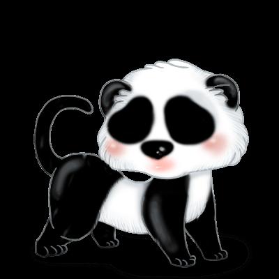 Adoptuj Fretka Panda