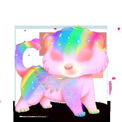 Adoptuj Fretka Rainbow