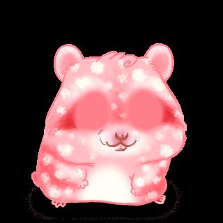 Adoptuj Chomik Bubbles