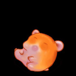 Hamster Citrouille