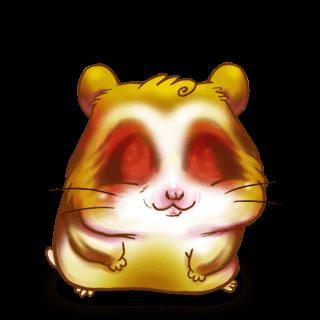 Adoptuj Chomik Złoty