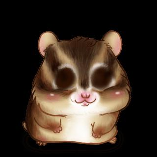Adoptuj Chomik Wiewiórka
