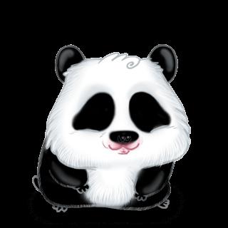 Adoptuj Chomik Panda