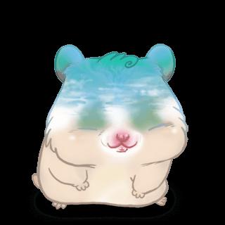 Adoptuj Chomik Plaża