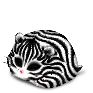 Adoptuj Chomik Zebra