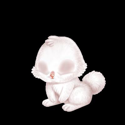 Adoptuj Królik Albinos