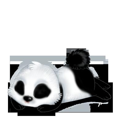 Królik Panda