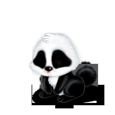 Adoptuj Królik Panda