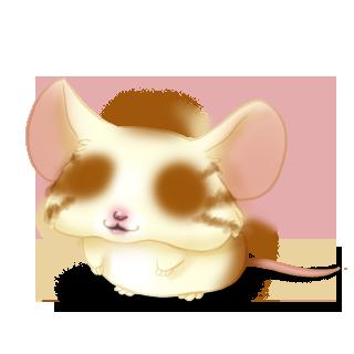 Adoptuj Mysz Blondy