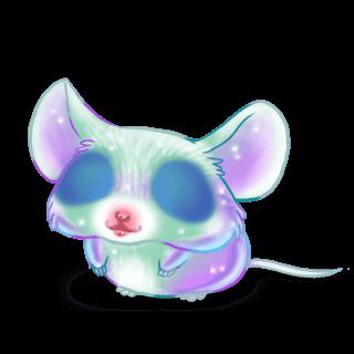 Adoptuj Mysz Boreal