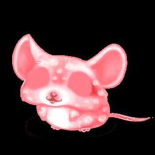 Adoptuj Mysz Bubbles