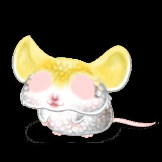Adoptuj Mysz Kakadu