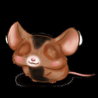 Adoptuj Mysz Ser
