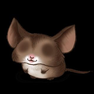 Adoptuj Mysz Nietoperz