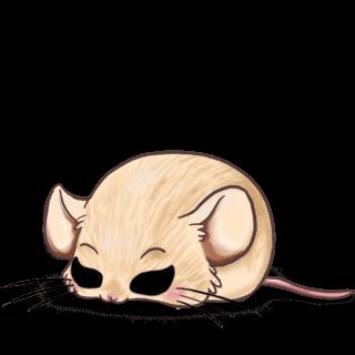 Adoptuj Mysz Chiński