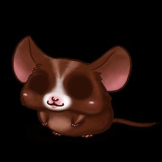 Adoptuj Mysz Choco