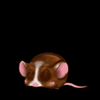 Adoptuj Mysz Czekolada mleczna
