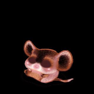 Adoptuj Mysz Czekolada