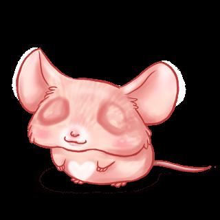 Adoptuj Mysz Miłość