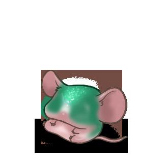 Adoptuj Mysz Szmaragd