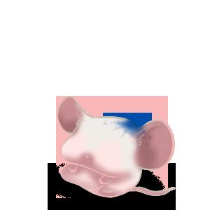 Adoptuj Mysz Atrament