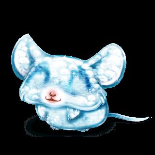 Adoptuj Mysz Lód