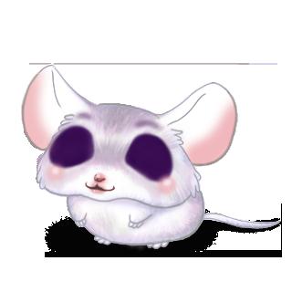 Adoptuj Mysz Szary skrzypcowy