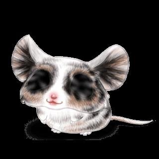 Adoptuj Mysz Iona