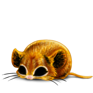 Adoptuj Mysz Lew