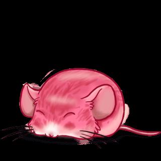 Adoptuj Mysz CroMimiNine